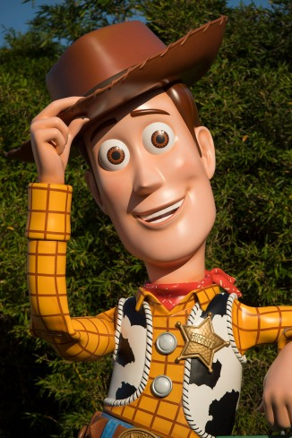 Woody Toy Story Land 2