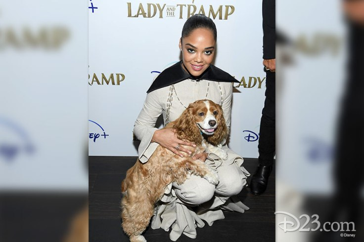 102319_gallery-lady-and-the-tramp-6