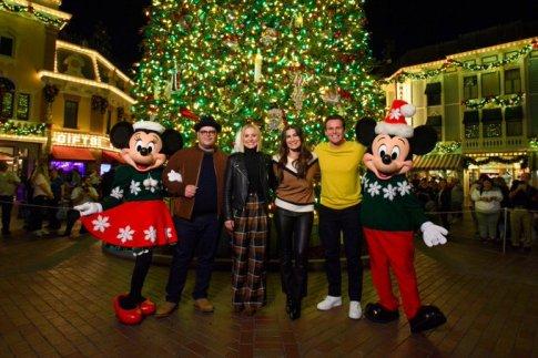 Frozen Stars Disneyland