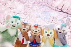 Duffy & Friends Shanghai Cherry Blossom