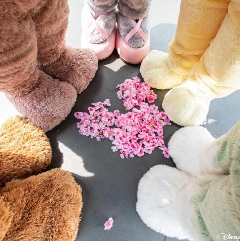Duffy & Friends Feet Shanghai Cherry Blossom