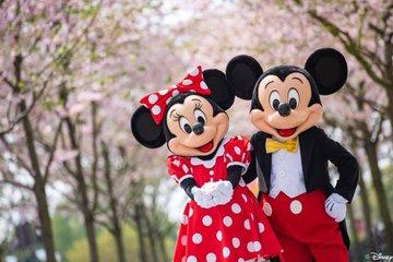 Mickey Minnie Shanghai Cherry Blossom