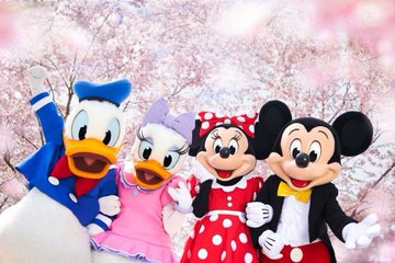 Mickey & Friends Shanghai Cherry Blossom